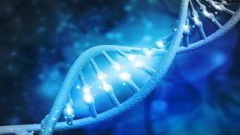 TCG: Test di Compatibilità Genetica